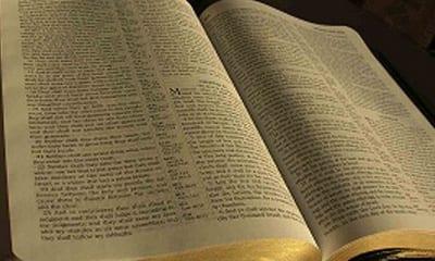 Predicas Cristianas - Proclamando la verdad de Dios